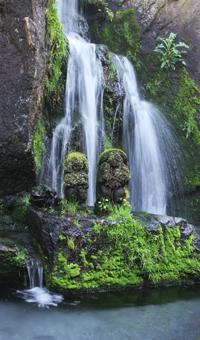 日本庭園・滝